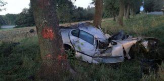 Boćki: Auto uderzyło w łosia. Zginęła kobieta